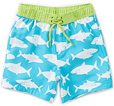 Little Me Baby Boys 6-24 Months Shark-Print Swim Trunks
