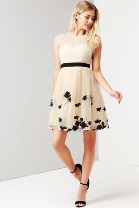 Little Mistress Beige Petal Applique Mini Dress