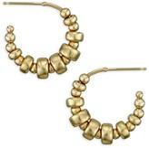 Chicco Zoë 14K Yellow Gold Beaded Small Hoop Earrings
