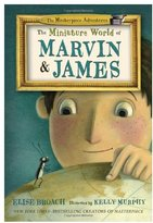 Mini A Ture Masterpiece Adventures: The Miniature World of Marvin and James (Book 1)