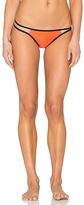 Pilyq Strappy Troy Teeny Bikini Bottom