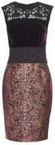 Sophie Theallet Velvet metallic dress