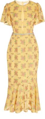 Markarian Rodomonte Floral Draped Flounce Sleeve Dress