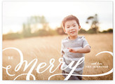 Minted Picture Frame Merry Christmas Photo Cards