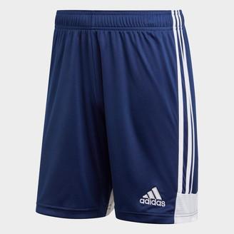 adidas Men's Tastigo 19 Training Shorts