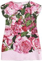 Dolce & Gabbana Roses Print Blend Cotton Brocade Dress