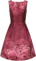 Evans **Chi Chi London Burgundy Midi Dress