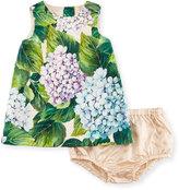 Dolce & Gabbana Taormina Dress w/ Bloomers, Green, Size 12-18 Months