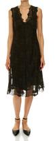 SABA Avery Lace Dress
