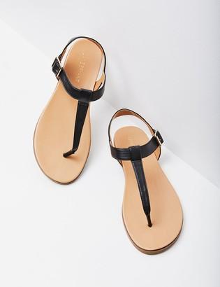 Lane Bryant T-Strap Sandal