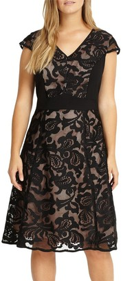 Studio 8 Cleo Lace Dress, Black