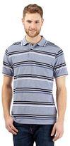 Maine New England Navy Striped Print Polo Shirt