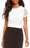 Calvin Klein Petites Short Sleeve Solid Textured Stripe Knit Tee