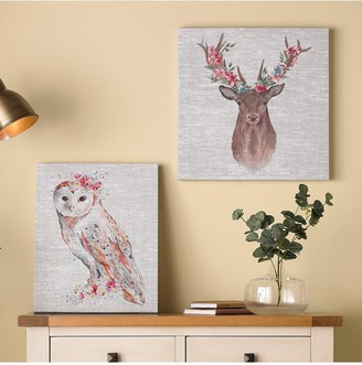 Graham & Brown Watercolour Floral Owl Canvas