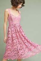 Donna Morgan Rosamund Lace Dress