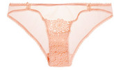 Mimi Holliday Low-Rise Embroidered Lace And Mesh Briefs