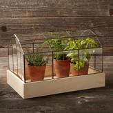 Williams-Sonoma Copper & Glass Terrarium