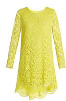 ADAM by Adam Lippes Long-sleeved guipure-lace trapeze mini dress