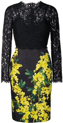 Dolce & Gabbana Mimosa-print and lace dress