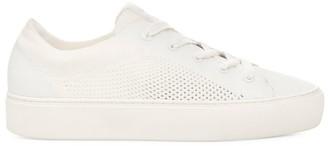 UGG Cakewalk Zilo Knit Sneakers