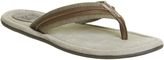 Ask the Missus Floyd Thong Sandals