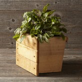 Williams-Sonoma Williams Sonoma Vertical GRO Planter Box