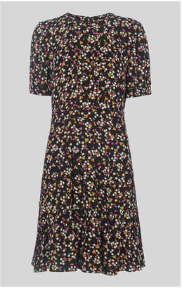Whistles Peony Print Pleat Detail Dress