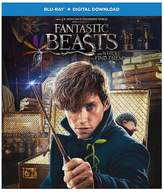 Fantastic Beasts & Where To Find Them Blu-ray