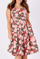 Emily And Fin NEW Womens Knee Length Dresses Isobel Dress ParisRose
