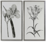 Uttermost Sepia Flowers 2-Pc. Print Wall Art