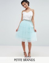 True Decadence Petite Layered Tulle Midi Skirt