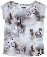 Molo T-shirts - Item 12065920