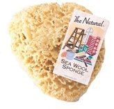 The Natural Sea Sponge, 7 to 8-Inch