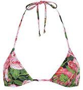 Dolce & Gabbana Rose Print Triangle Bikini Top