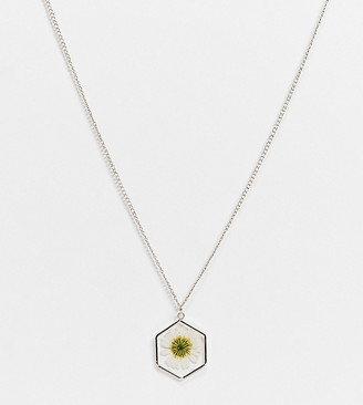 ASOS DESIGN Curve necklace with trapped daisy pendant in gold tone