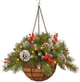 NATIONAL TREE CO National Tree Company 20 Frosted Berry Battery-Operated LED Hanging Basket with Timer