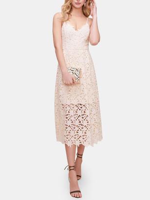 ASTR the Label Lace A-Line Midi Dress