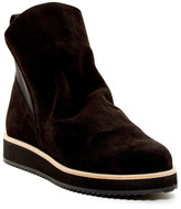 Patricia Green Charley Bootie