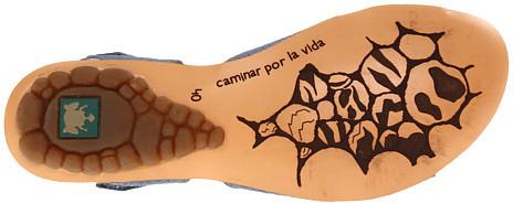 El Naturalista Sassi N145