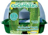 Dunecraft Sprout 'n Grow Greenhouse Grow Your Own Cucumbers