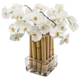 SIA White Phalaenopsis Orchid with Bamboo - Large