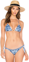 Caffe Triangle Bikini Top