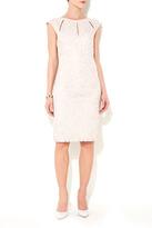 Wallis Oyster Lace Dress