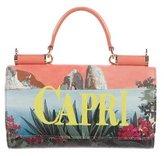 Dolce & Gabbana 2016 Capri Mini Sicily Von Phone Bag