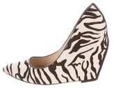 Jean Michel Cazabat for Sophie Theallet Ponyhair Pointed-Toe Pumps
