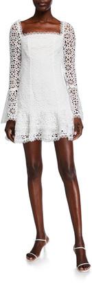 Mestiza New York Sintra Long-Sleeve Eyelet Mini Dress