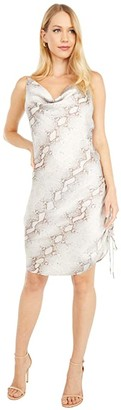 Bishop + Young Rachel Slip Dress (Natural Python) Women's Clothing