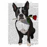 Asstd National Brand Boston Terrier with Rose Canvas Wall Art