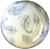 Natural History - The Origin of Style Floating Feathers Paperweight