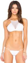 Lisa Maree Playful Plunder Bikini Top